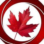 Novus immigration Profile Picture