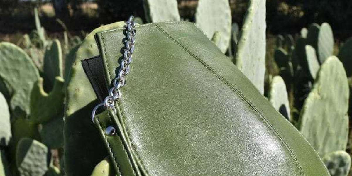 Desserto, the biodegradable leather made from cactus